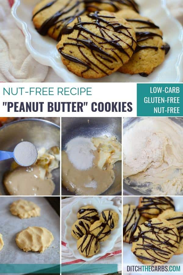 nut free faux peanut butter cookie recipe
