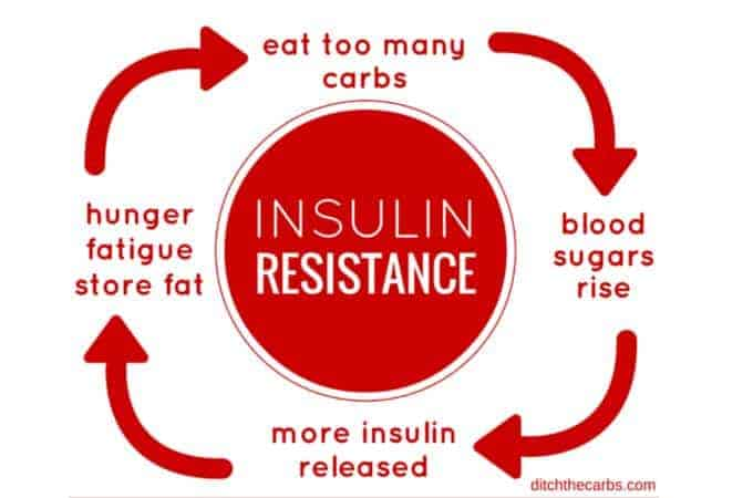 What is insulin resistance? Read the full article | ditchthecarbs.com
