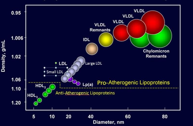 what is cholesterol and lipoproteins